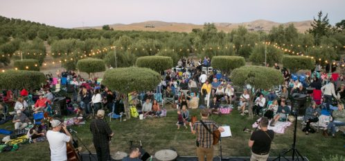 Music in the Orchard 2019